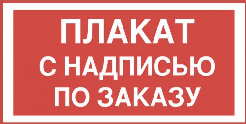 Знак по заказу с надписью на пластике 250х300мм