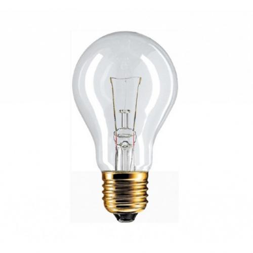 Лампа накаливания ОН 220-230В 60Вт Е27 грибок 50х98мм 1/100